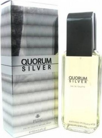 Antonio Puig Quorum Silver EdT M 100 ml